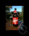 Spanish Beers: Cruzcampo