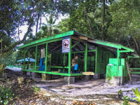 Night Shelter Sounds, Rock Islands, Palau