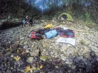 Peninsula Camp Sounds, Rock Islands, Palau