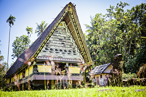 Palau: Airai -- The Land: Planting