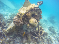 Japanese Fighter Plane in Ngchus Cove, Palau