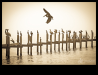 Images of the Mississippi Gulf Coast